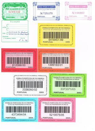 Títulos Portugueses de 1996 a 2005