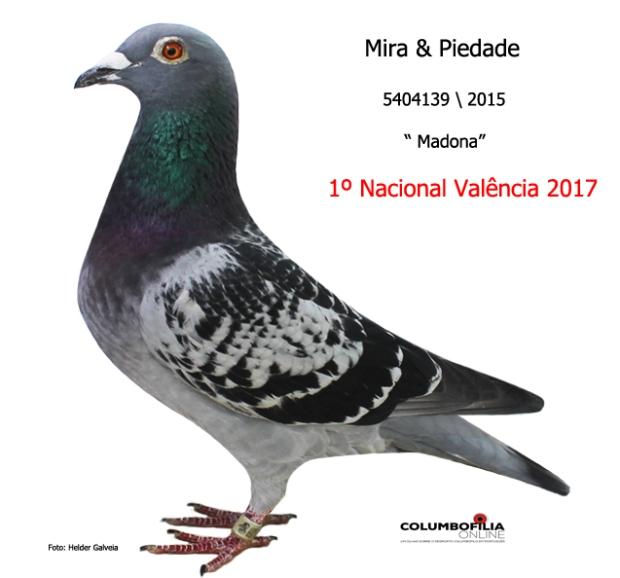 campea nacional Valencia I 2017
