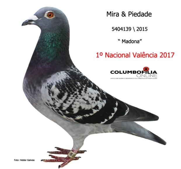 campea nacional iValencia I 2017