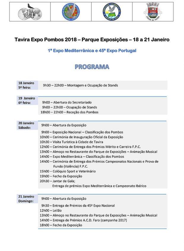 programa exposição
