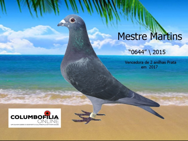 0644 mestre amrtins