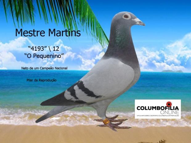 4193 mestre martins