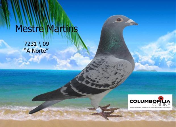 7231 mestre martins