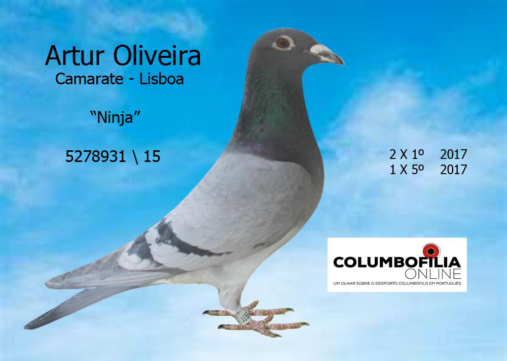 ninja artur oliveira
