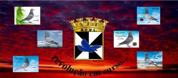 destaque revolução acdl 2018