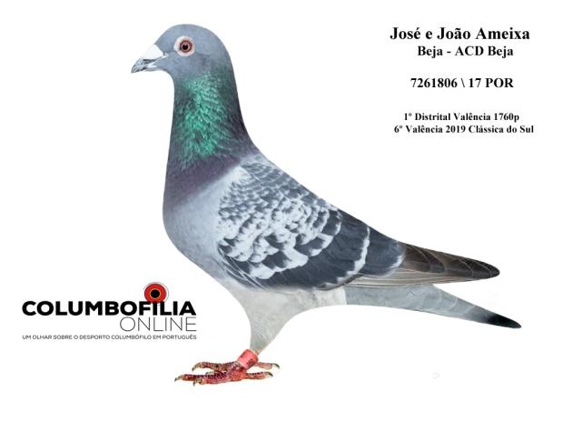 pombo Ameixa