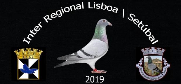 logotipo inter regional lisboa setubal.jpg