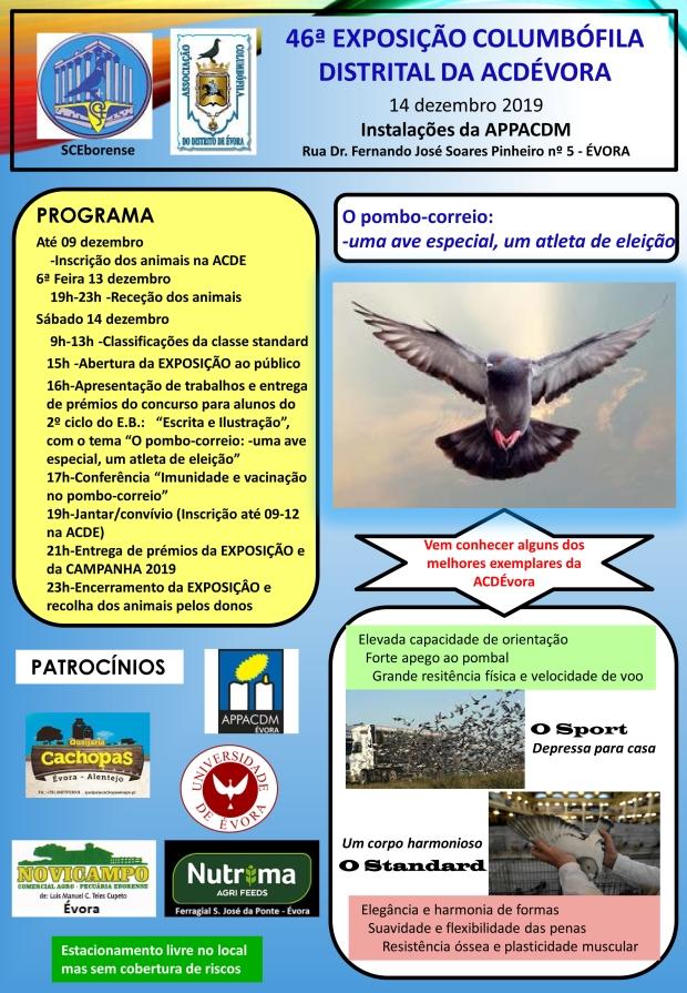 GRUPO COLUMBÓFILO DE CASTANHEIRA