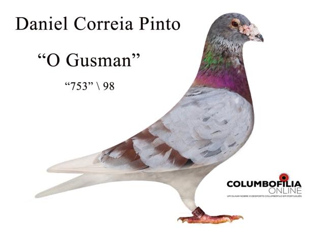 gusman daniel Pinto