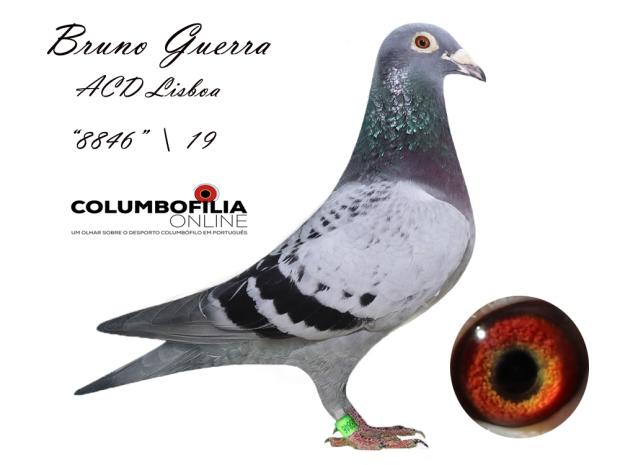 8846 Bruno Guerra.jpg